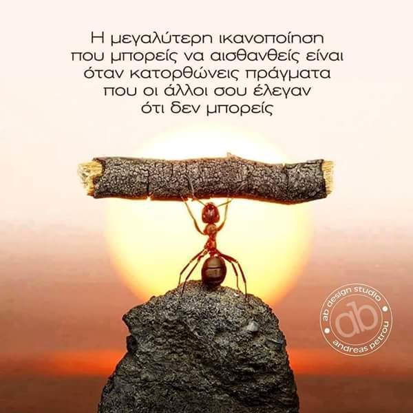 FB_IMG_1437987676055